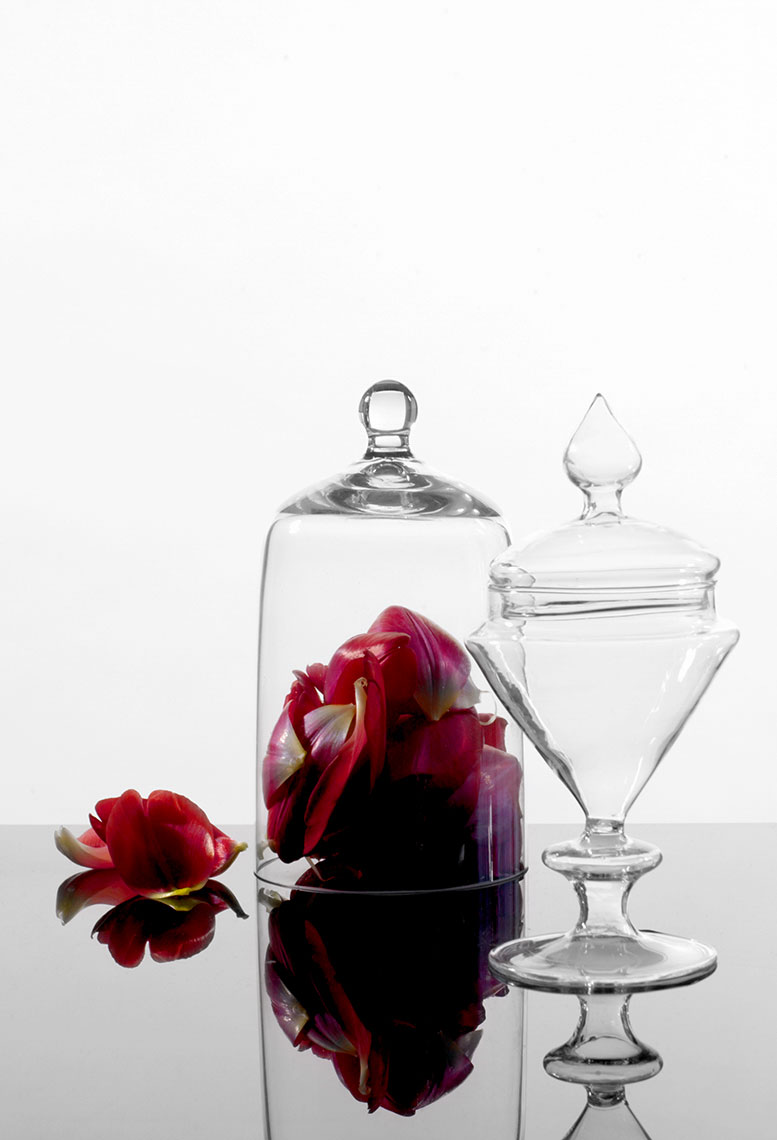 glass-and-rose